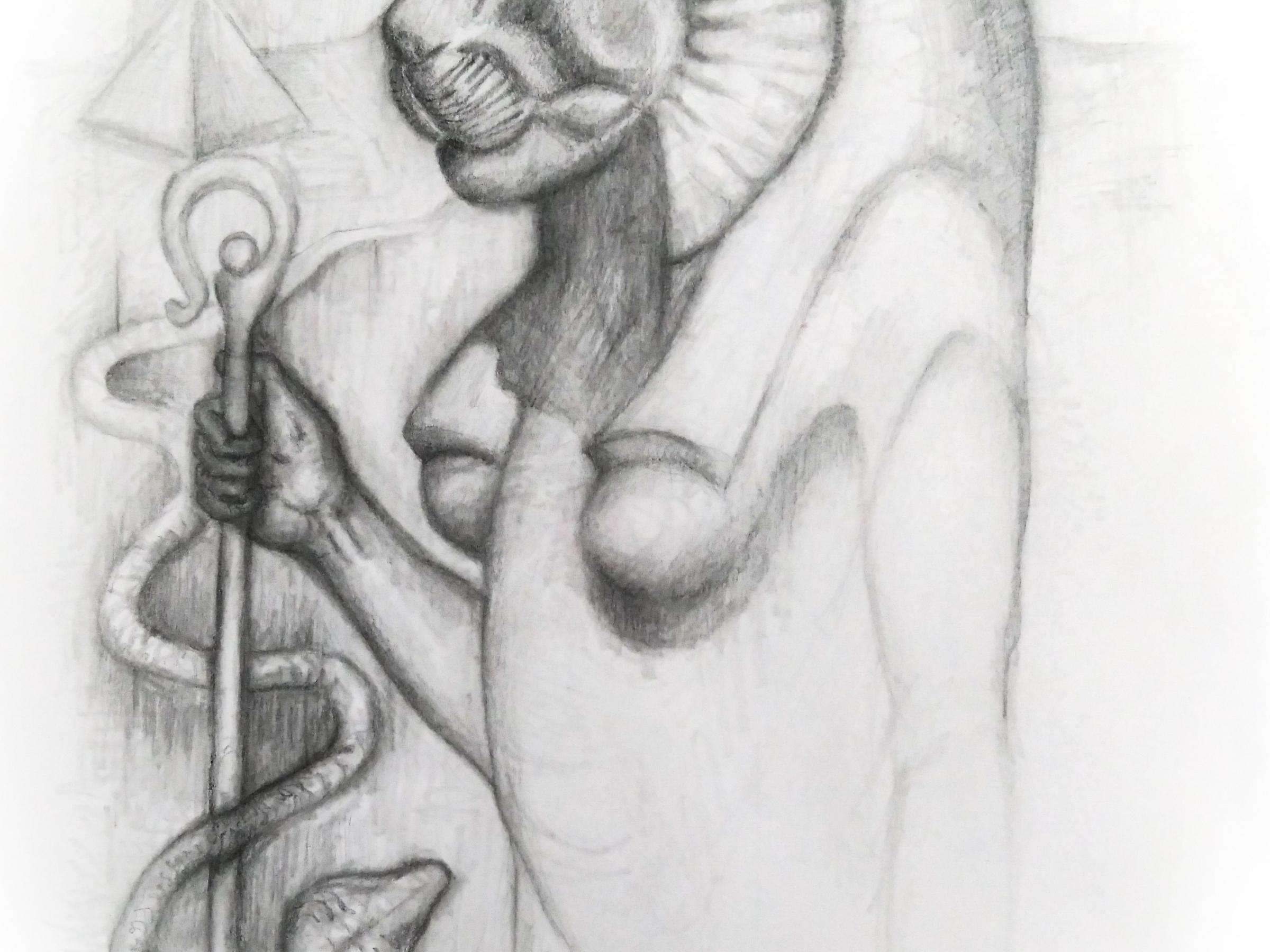 pencil drawing of lion head egyptian goddess sekhmet by artist phoebe thomasson